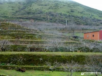 Cerezos en flor; Valle del Jerte; puente de semana santa madrid alrededores excursiones tiendas trek